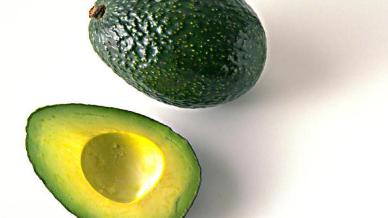 avocadokern immer mitessen kern enth lt mehr n hrstoffe als fruchtfleisch. Black Bedroom Furniture Sets. Home Design Ideas