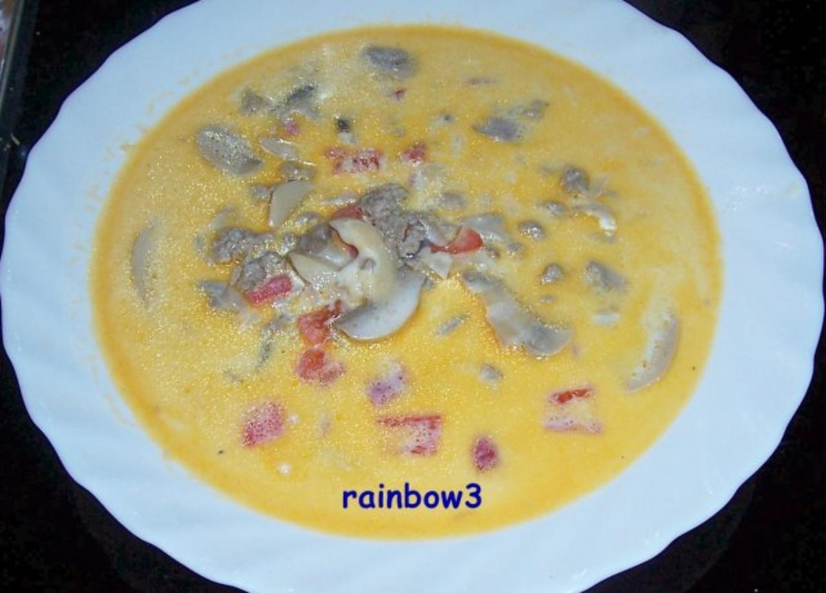 Kochen k se hackfleisch suppe rezept for Kochen mit hackfleisch