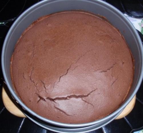 Schoko kokos kuchen mit osterdeko rezept for Kuchen mit bild