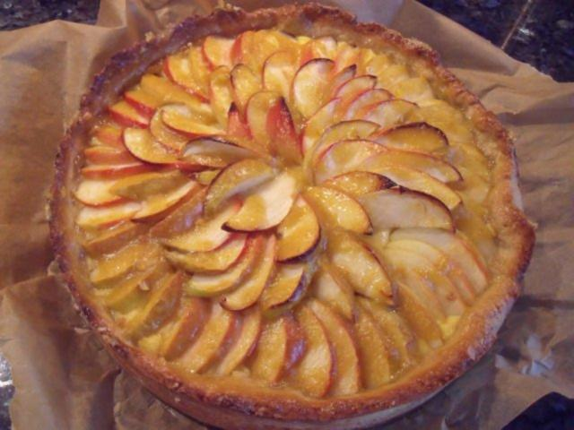 Apfel mohn vanillepudding kuchen