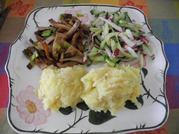 vegan kartoffel sellerie stampf mit gebuttertem lauch seitan an gurken radieschen salat. Black Bedroom Furniture Sets. Home Design Ideas