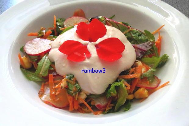 salat bunter rohkost salat mit joghurt dressing rezept. Black Bedroom Furniture Sets. Home Design Ideas