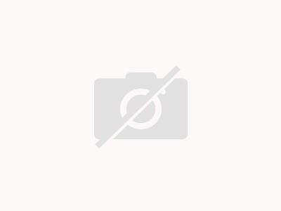 Birnen quark torte mit krokant sahne
