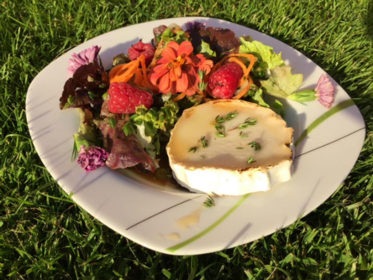 salat mit warmem ziegenk se und honig rezept. Black Bedroom Furniture Sets. Home Design Ideas