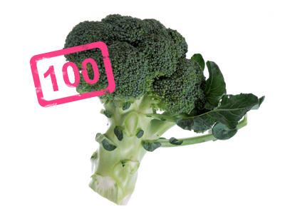 FZ Lebensmittel IQ