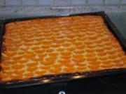 Annis Mandarin-Quark-Kuchen vom Blech - Rezept