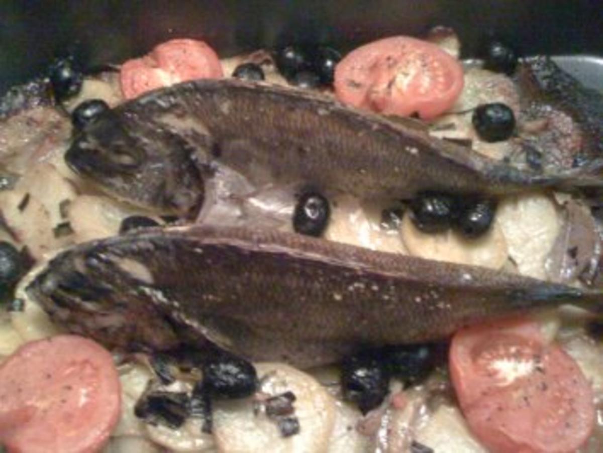 Dorade aus der Provence - Rezept Von Einsendungen Madabe