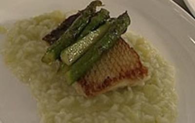 Zander auf Bett vom Risotto mit grünem Spargel (Ralf Richter) - Rezept