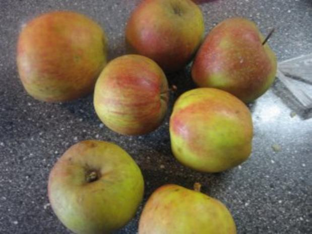 gefüllter Apfelkuchen - Rezept - Bild Nr. 9