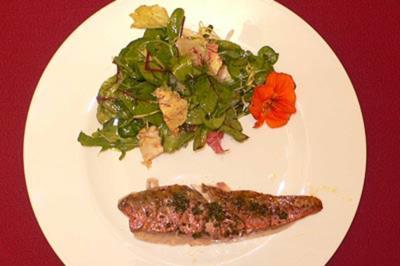 Rotbarbe auf kleinem Salat - Rezept