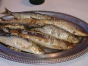 Gebackene Sardinen - Rezept