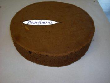 Dunkler-Wiener-Boden - Rezept
