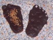 Schwarze Füße... - Rezept