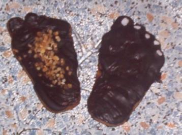 Rezept: Schwarze Füße...