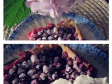 Johannisbeerkuchen mit Quarkguß - Rezept