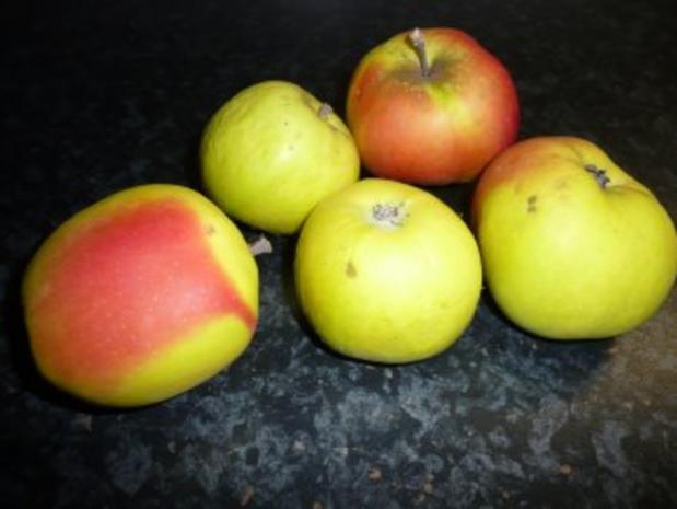 Apfelkuchen - gedeckt - Rezept - Bild Nr. 3