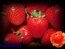 Erdbeereis selbstgemacht - Rezept