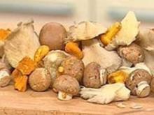 Schnelle Pilzsuppe - Rezept