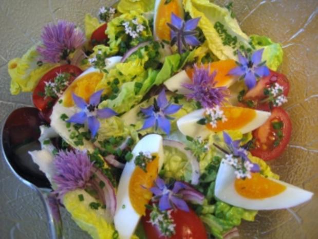 Salat-Vielfalt ... - Rezept - Bild Nr. 38