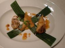 Vegetarische Frühlingsrolle, gefüllte Hähnchenhaut, gefüllte Wan Tan - Rezept