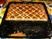 BLECHKUCHEN - Steppdecken-Kuchen - Rezept