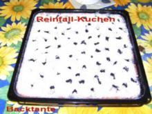 BLECHKUCHEN - Reinfallkuchen - Rezept