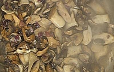 Waldpilze mit Majoran - Rezept