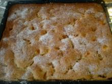 Blechkuchen mit Sauerkirschen,oder Mandarinen - Rezept