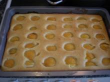 DER Marillenkuchen - Rezept