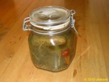 Eingemachte Gurken - Rezept