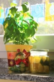 Eingelegter Feta mit Basilikum und getrockneten Tomaten - Rezept