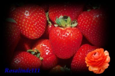 Erdbeer-Sahne- Brotaufstrich - Rezept