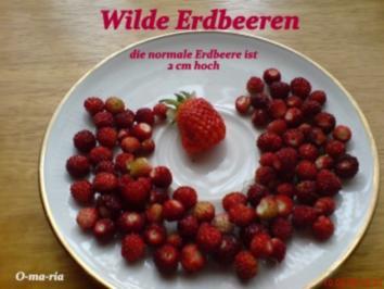 Sonstiges  Wilde Erdbeeren - Rezept