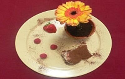 Rezept: Aprikosen-Tiramisu an Früchten und Eisblume