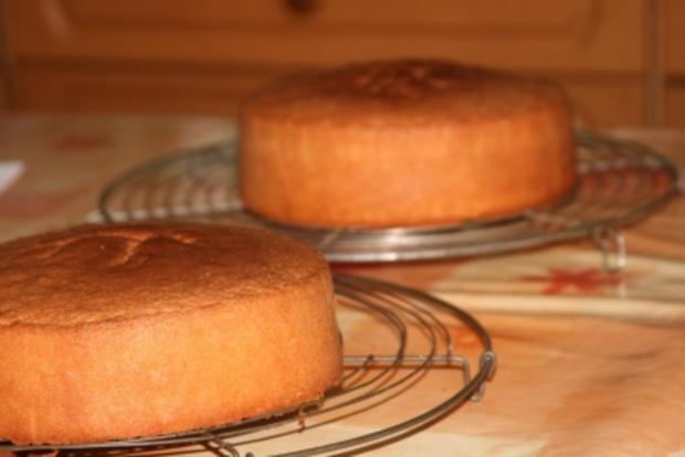 Aprikosen Biskuit - Rezept - Bild Nr. 7