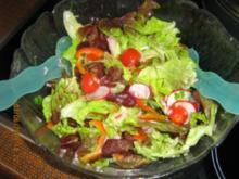 Bunter Salat mit einem leckeren Senf-Dressing - Rezept