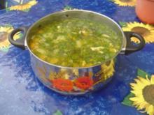Frischer Kohlrabi-Möhreneintopf - Rezept