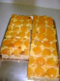 Blechkuchen mit Marillen (Aprikosen) - Rezept