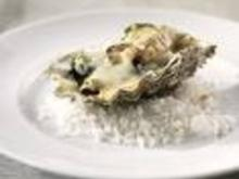 gratinierte Austern - Rezept