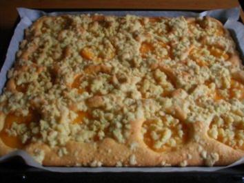 6 Pfirsich Blechkuchen Mit Vanillepudding Rezepte Kochbar De