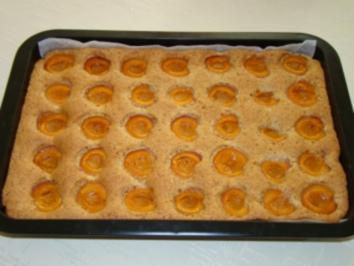 Schneller Marillen - Nuss - Kuchen - Rezept