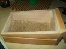 Grünkern - Wirsing - Rouladen - Rezept