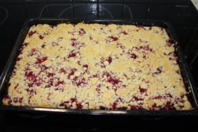 Blech: Johannisbeer-Quark-Streuselkuchen - Rezept
