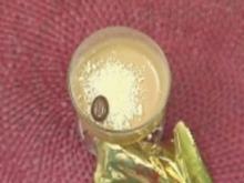 Espressomousse auf Gelber Grütze - Rezept