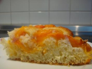 Kuchen: Aprikosenkuchen sehr fein....schlanke Version - Rezept