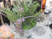 Sommer-Portulak-Salat à la Witchy - Rezept