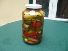 Chilis und Paprikaschoten - Selbst eingelegt - Rezept