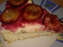 Zwetschgenkuchen mit Quarkfüllung - Rezept