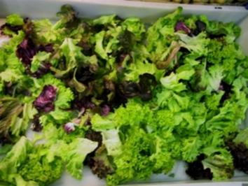 Blattsalat mit Melone - Rezept