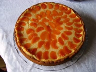 Kuchen-gedeckter Schmandkuchen mit Mandarinen - Rezept